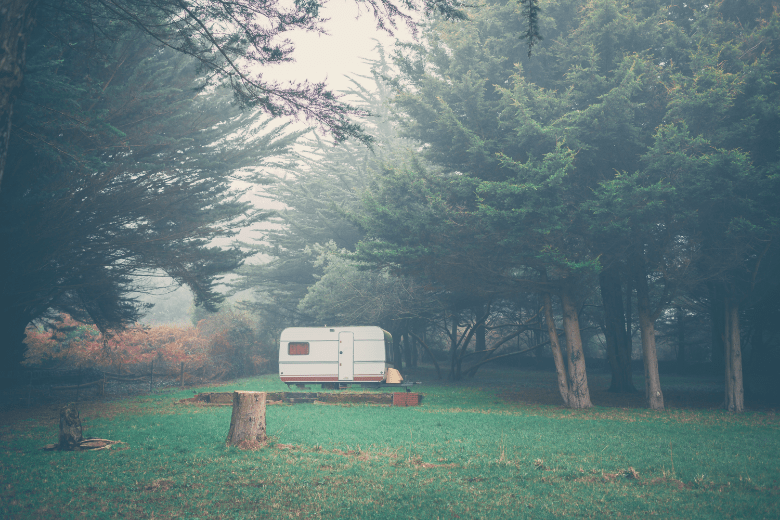 Small travel trailer in middle of field surrounded by forest